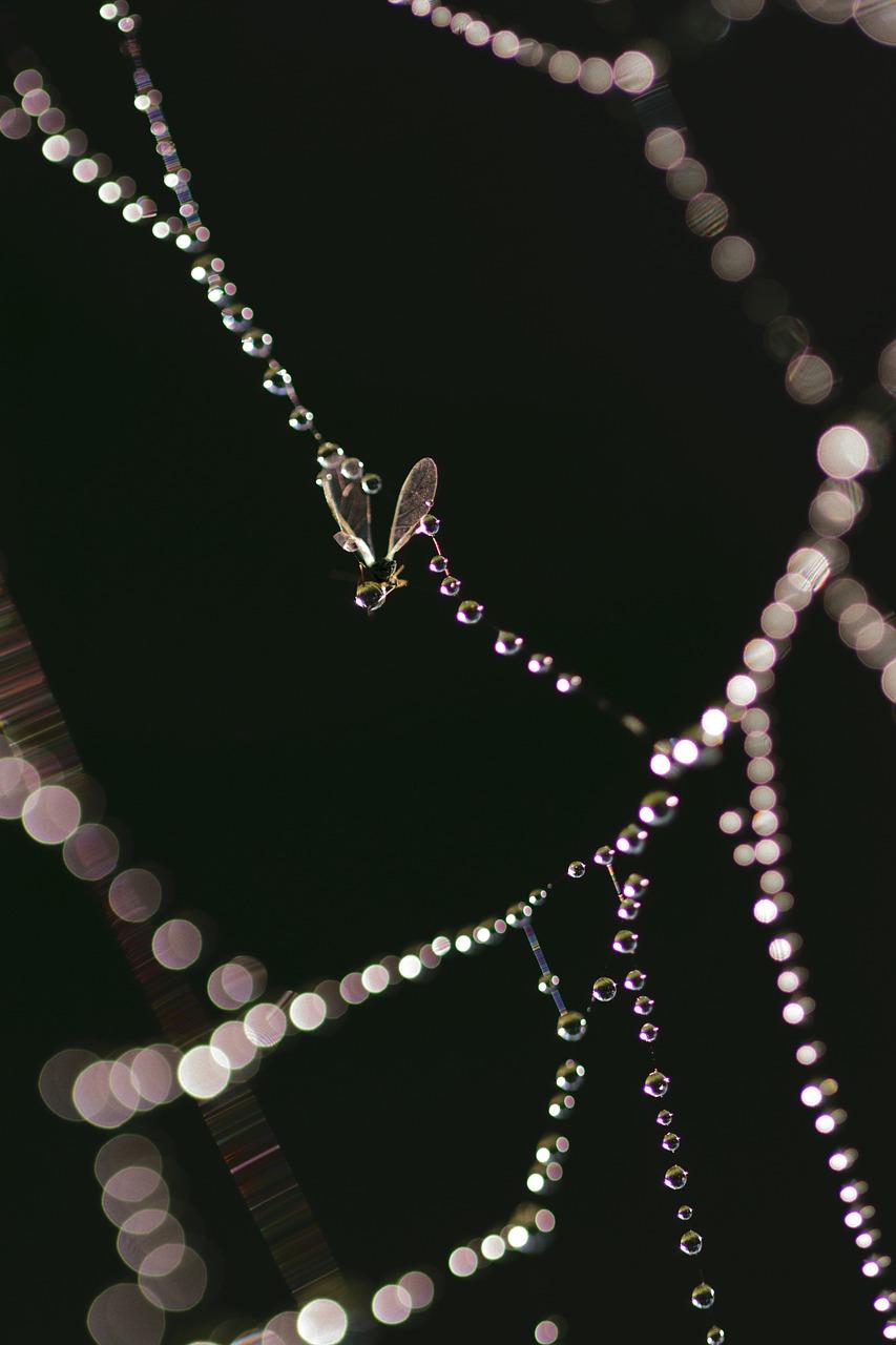 שרשראות יהלומים